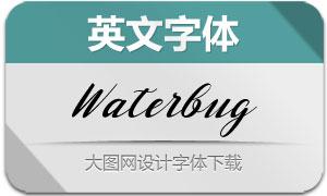 Waterbug(英文字体)