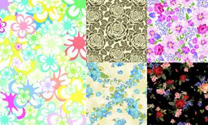 玫瑰花等植物花纹图案元素矢量素材