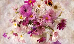 花瓶中美丽鲜花手绘图片素材