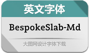 BespokeSlab-Medium(英文字体)