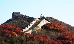 长城与山坡之上的草木摄影高清图片