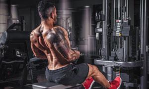做肌肉训练的纹身男子摄影高清图片