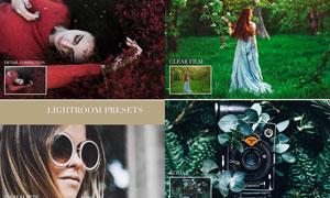 20款照片唯美暖色艺术效果LR预设