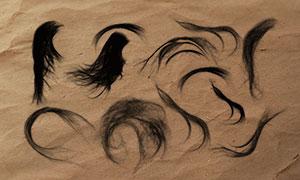 14款高清晰女性头发和发束PS笔刷