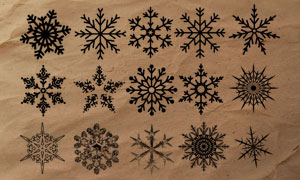 18款冬季雪花形状装饰PS笔刷