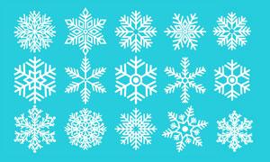 冬季高清晰雪花形状PS笔刷