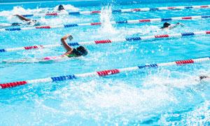 泳池中奋勇争先游水的人们高清图片