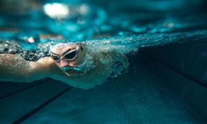 游泳池中的游泳者水下摄影高清图片