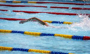 泳池中训练的游泳人物摄影高清图片