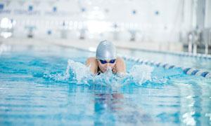 在游泳池中的游泳健将摄影高清图片
