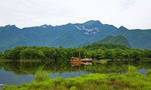 神农架大九湖旅游景观摄影图片