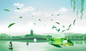 西湖龙井茶叶宣传海报设计PSD素材