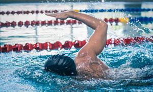游泳池中的自由泳男子摄影高清图片
