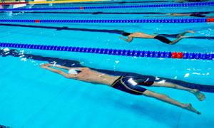 在举办比赛的室内泳池摄影高清图片