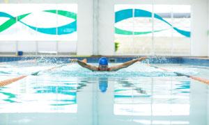 泳池中的蝶泳姿势人物摄影高清图片