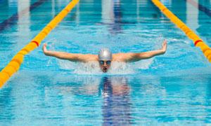 奋力向前游的蝶泳男子摄影高清图片