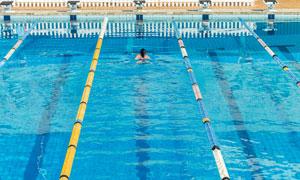快游到终点的游泳人物摄影高清图片