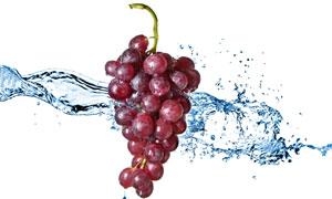 新鲜健康红色葡萄特写摄影高清图片