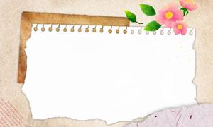 绿叶红花与撕边效果的纸张分层素材
