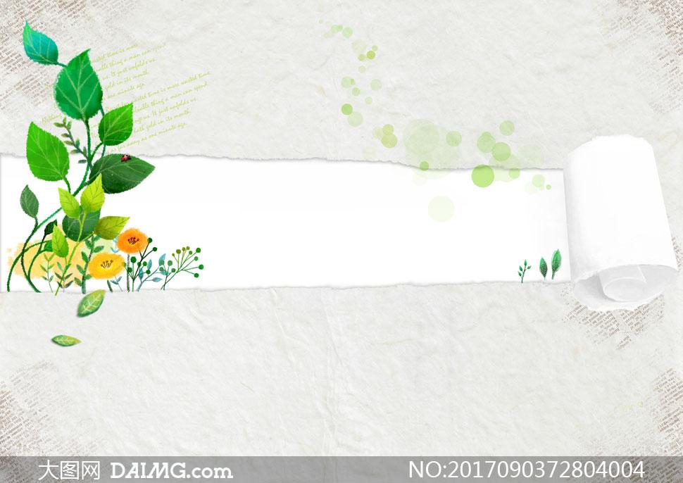 文字段落撕边边框撕纸叶子绿叶英文纸卷藤蔓枝叶植物花草圆点褶皱瓢虫