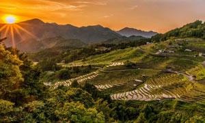 阳光下的山峦梯田景观摄影高清图片