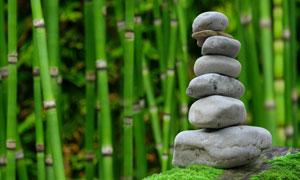 竹林与摞成一摞的石头摄影高清图片