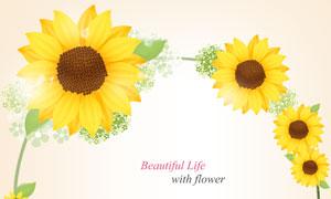 黄色向日葵花装饰边框设计分层素材
