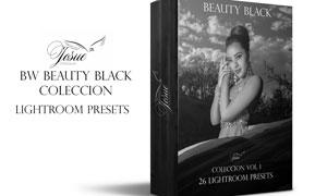 26款影楼高质量黑白艺术效果LR预设