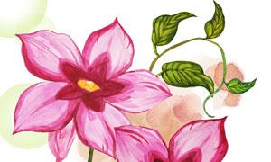 复古风格水彩效果花卉插画分层素材