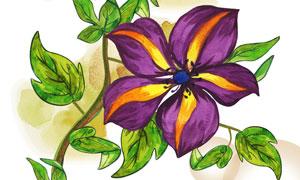 绿叶紫色花卉植物主题插画分层素材