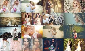 50款婚礼照片时尚艺术效果LR预设