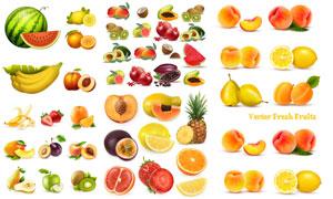 逼真效果西瓜与香蕉等水果矢量素材