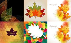 花纹图案与秋天的树叶创意矢量素材