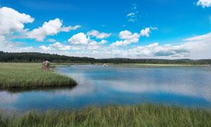 塞罕坝七星湖美丽风光摄影图片