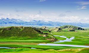 蓝天下的美丽草原景观摄影图片