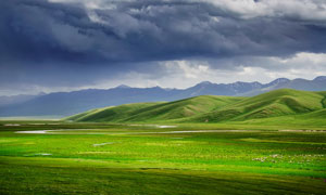 草原上美丽的景观摄影图片