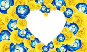 蓝色黄色玫瑰花组成的边框分层素材