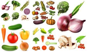 番茄辣椒与土豆洋葱等蔬菜矢量素材