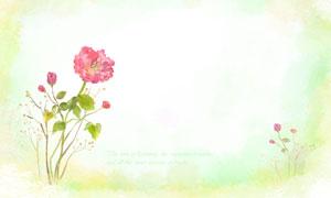 红花植物与水彩风背景创意分层素材