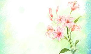 百合花朵点缀水彩边框背景分层素材