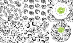 黑白效果的玉米与卷心菜等矢量素材