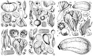 黑白手绘风格蔬菜产业设计矢量素材