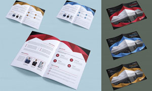 三种配色方案画册折页版式矢量素材