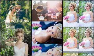 25款专业级婚礼照片后期调色LR预设