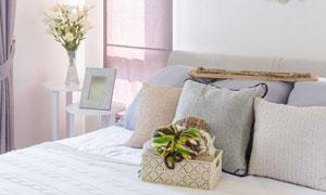 房间花卉植物与床上用品等高清图片