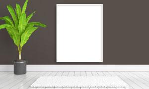 绿色植物与空白的画框创意高清图片