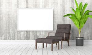 空白装饰画与绿叶植物创意高清图片