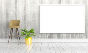 植物与墙上的空白装饰画框高清图片