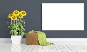 向日葵与墙上空白画框创意高清图片