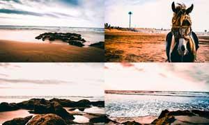 沙滩海景照片后期质感效果LR预设